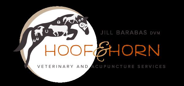 HHV_logo